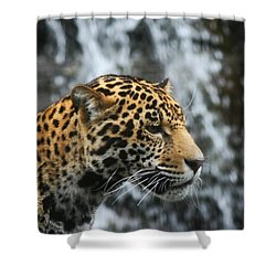 On The Job Training Shower Curtain