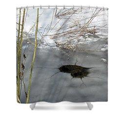 On The River. Heart In Ice 02 Shower Curtain by Ausra Huntington nee Paulauskaite