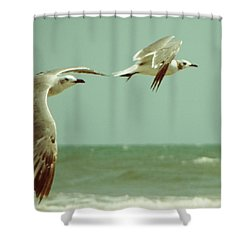 On The Wings Of A Seagull Shower Curtain