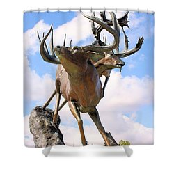 On Top Of The World Shower Curtain by Kristin Elmquist
