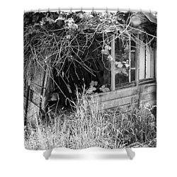 Shower Curtain featuring the photograph Once A Castle by Chriss Pagani