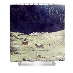 Shower Curtain featuring the photograph Open Range by Bonfire Photography