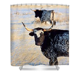 Shower Curtain featuring the photograph Open Range by Jim Garrison