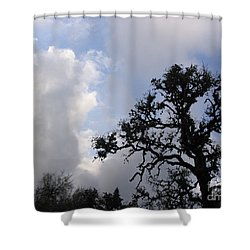 Opening Weekend Shower Curtain by Mark Robbins
