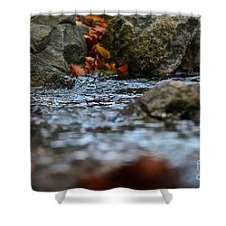 Opposite Shore Shower Curtain by Susan Herber