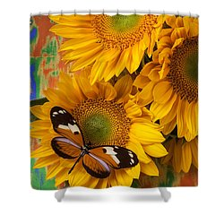 Orange Black Butterfly And Sunflowers Shower Curtain by Garry Gay