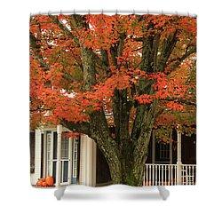 Orange Leaves And Pumpkins Shower Curtain by Deborah Benoit