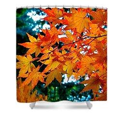 Orange Maple Leaves Shower Curtain