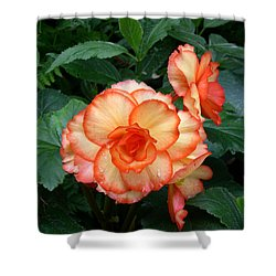 Shower Curtain featuring the digital art Orange Spectacular by Claude McCoy