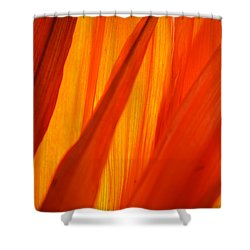 Orange Sunshine Shower Curtain by Bobby Villapando