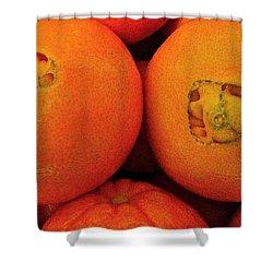 Oranges Shower Curtain by Bill Owen