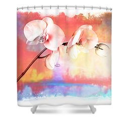 Orchid 3 Shower Curtain by Mauro Celotti