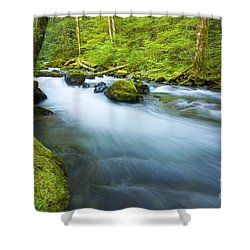 Out Of The Rainforest Shower Curtain by Mike  Dawson