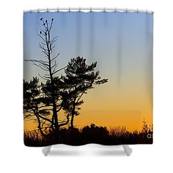 Out On A Limb Shower Curtain by Davandra Cribbie