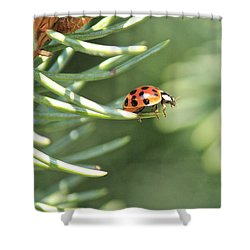 Shower Curtain featuring the photograph Out On A Limb by Penny Meyers