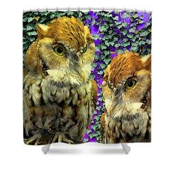 Owl Look Shower Curtain by Lynda Lehmann