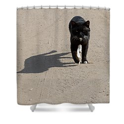 Owner Shower Curtain by Michael Goyberg