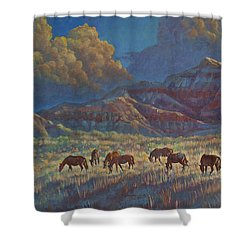 Shower Curtain featuring the painting Painted Desert Painted Horses by Rob Corsetti