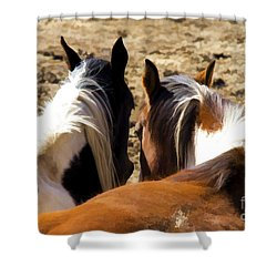 Painted Horses IIi Shower Curtain