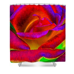 Painted Rose 1 Shower Curtain by Will Borden