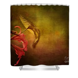 Painterly Ballet Shower Curtain by Anne Rodkin