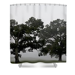 Pair Shower Curtain by Amanda Barcon
