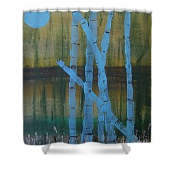 Pale Blue Moon Shower Curtain