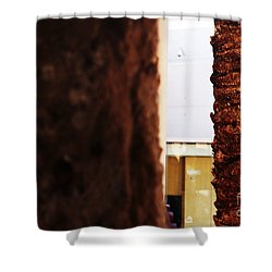Palm And Wall Shower Curtain