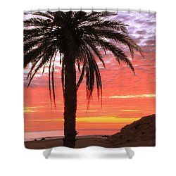 Palm Tree And Dawn Sky Shower Curtain
