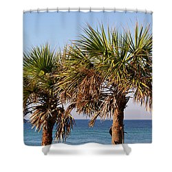 Palm Trees Shower Curtain by Sandy Keeton