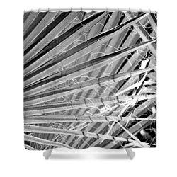 Palm Veils Shower Curtain