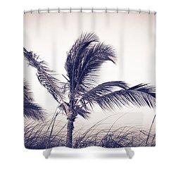Palms 4 Shower Curtain