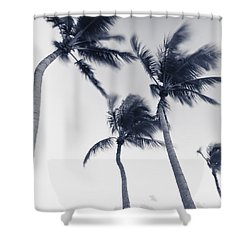 Palms 5 Shower Curtain