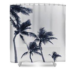 Palms 6 Shower Curtain