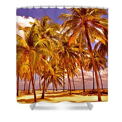 Palms On Half Moon Caye II  Shower Curtain by Valerie Rosen