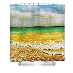 Panoramic Seaside At Tulum Shower Curtain by Tammy Wetzel