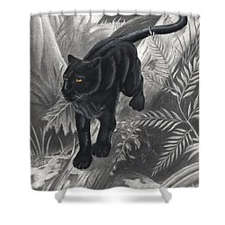 Panther By The Water Shower Curtain