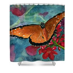 Papilio Fandango  Shower Curtain