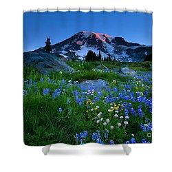 Paradise Garden Dawning Shower Curtain by Mike  Dawson