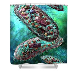 Paramecium Shower Curtain
