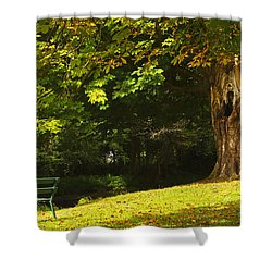 Park Bench Beside The Owenriff River In Shower Curtain by Trish Punch