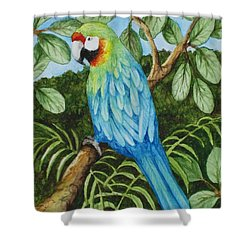 Parrot Shower Curtain by Katherine Young-Beck