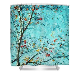 Parsi-parla - D01d03 Shower Curtain