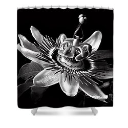 Passion Flower In Black And White Shower Curtain