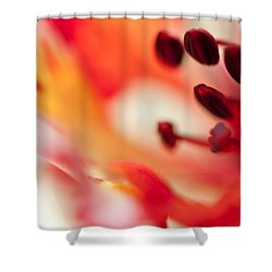 Passion For Flowers. Flamboyant Blossom  Shower Curtain by Jenny Rainbow