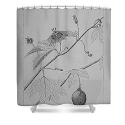 Passionflower Vine Shower Curtain