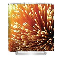 Pasta Illumination Shower Curtain