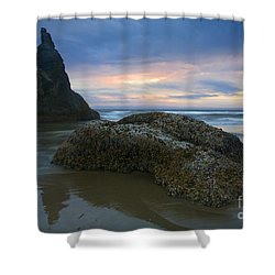 Pastel Illusions Shower Curtain by Mike  Dawson