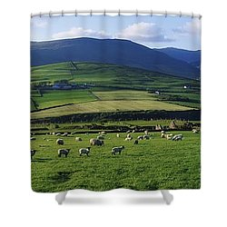 Pastoral Scene Near Anascual, Dingle Shower Curtain by The Irish Image Collection
