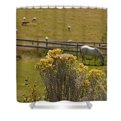 Pastures Shower Curtain